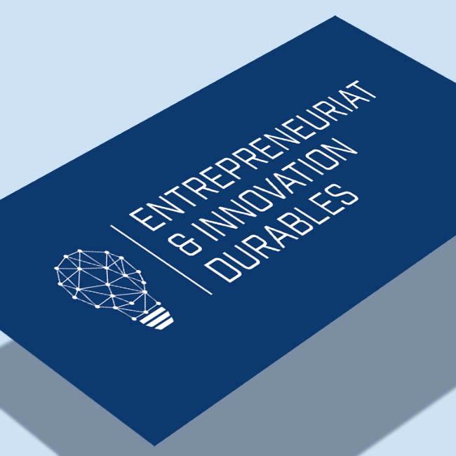 Identité visuelle, affiche pour le Labex Entreprendre